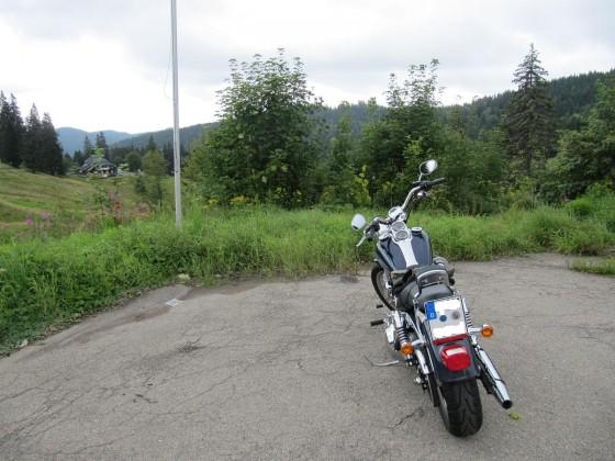 Black Forest Dream-Cruising